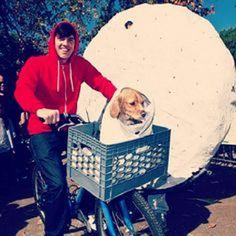Looking for bike-themed Hallowe'en ideas... It's all about involving the pets!! Have you seen any others? #moreadventure #cycling #halloween #halloween2016