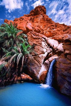 """Chebika oasis, Tunisia """"Oasis"""" by Miodrag Bogdanovic [?] Oasis Legend is that Star Wars character Chewbacca owe its name to this oasis :) One of most beautiful in Tunisia! Oasis, Beautiful Waterfalls, Beautiful Landscapes, Places To Travel, Places To See, Wonderful Places, Beautiful Places, Places Around The World, Around The Worlds"""