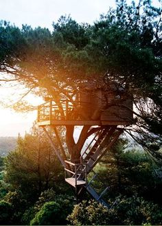 Treehouse in the sky