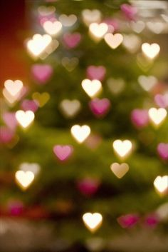 pink and white heart christmas tree lights filter