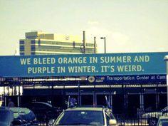 We Bleed Orange in Summer and Purple in Winter, It's Weird..