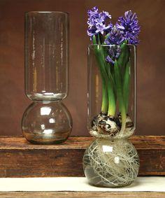 Simple. Clear. Bulb Vase.