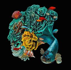 hyper realistic paintings of fish merged with their habitats by Lisa Ericson