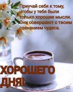 Чашки, Томи, Доброе Утро