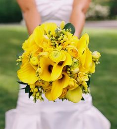 Pretty Yellow Wedding Flowers {Bright yellow ranunculus, freesia and mini calla lilies shine among Israeli ruscus.} More arrangements on the page - click pictures for details. Ranunculus Bouquet, Calla Lily Bouquet, Calla Lilies, Daffodil Bouquet, Bouquet Toss, Yellow Wedding Flowers, Yellow Flowers, Bride Bouquets, Bridesmaid Bouquet