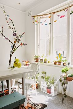 White kitchen decorated with indoor plants