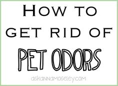 We all love our animals but sometimes they can smell! Here are a few ways and products to eliminate the pet odors from your house! It's easier than you think!
