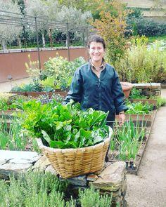 A simpática Joana faz a colheita das verduras na horta do @sixsensesdourovalley Os alimentos vão direto para a cozinha do hotel. #trip  #health #travel #douro #portugal by brasiltravelnews