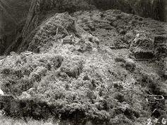 Agustín Lizárraga: ¡No! Descubrió Machu Picchu   WWW.ALEJANDROLATORRE.ORG - Alejandro La Torre - Dalvy Fotografía N° 1 de Machu Picchu, cuando fue descubierta el 24 de Julio 1911