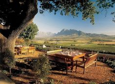Lovely Cape Winelands. Here you see our favourite De Leuwen Jagt in Agter Paarl Road, Western Cape South Africa