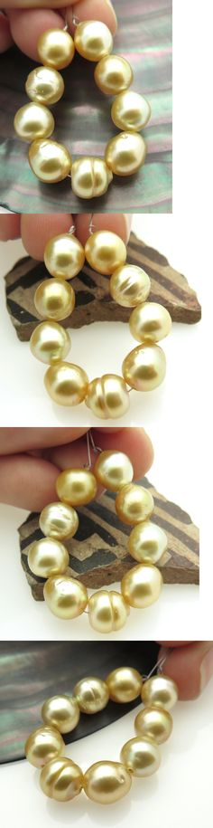 Pearl 10243: 9 Stunning Rare Aa+ Burma South Sea Gold 7.5-8 Cultured Pearls -> BUY IT NOW ONLY: $115 on eBay!