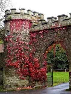 """bonitavista: """" Stourhead Gardens, England photo via carolina """" There is much much more to Stourhead Gardens, Wiltshire, England than this fantastical autumnal gate. There's sprawling gardens and an. Beautiful Castles, Beautiful Gardens, Beautiful Places, England And Scotland, Kent England, Westerns, Great Britain, Porches, Bungalow"""