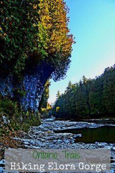 Ontario Trails: Hiking Elora Gorge * The World As I See It Elora is one of Ontario's gems and hiking Elora Gorge is a must for any outdoor fan. There are plenty of hidden gems to discover! Get Outdoors, The Great Outdoors, Canadian Travel, Canadian Rockies, Ontario Travel, Day Trips, Weekend Trips, Vacation Spots, Vacation Ideas