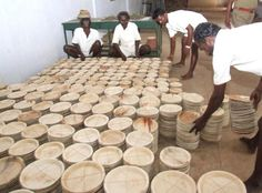 ARECA PLATES: As the demand for chewing areca has decreased, attempts are  being made to find alternative uses. #mystatewithjaypore