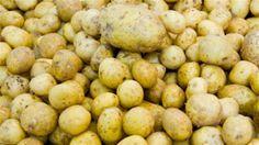 Fondant kartofler