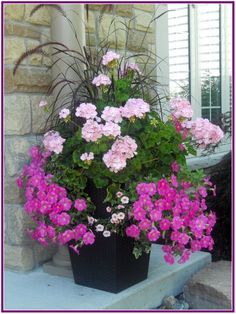 31 Pretty Front Door Flower Pots For A Good First Impression – Planters – Ideas … - Bepflanzung Beautiful Flowers, Flower Pots, Plants, Summer Flowers, Flower Planters, Container Flowers, Container Plants, Outdoor Flowers, Garden Design
