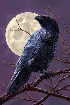 Baltimore, Maryland - Raven and Moon Purple Sky - Lantern Press Artwork Giclee Art Print, Gallery Framed, Espresso Wood), Multi Crow Art, Raven Art, Bird Art, Sky Lanterns, Arte Obscura, Crows Ravens, Purple Sky, Sky Art, Stock Art