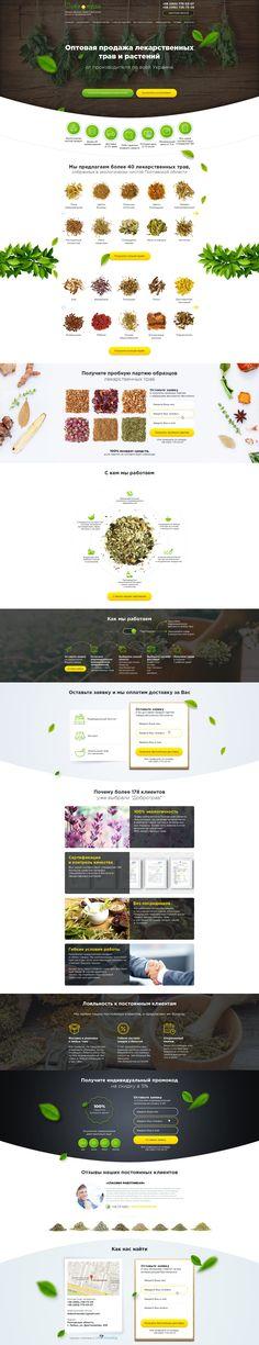 Landing page по оптовой продаже лекарственных трав | Кейсы Uni Consulting