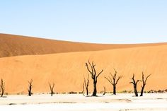 Deadvlei, Namibia Tourism, Africa, Tapestry, Travel, Painting, Art, Turismo, Hanging Tapestry, Art Background
