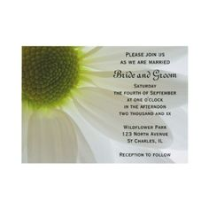 White #Daisy Petals #Wedding #Invitation  http://www.zazzle.com/loraseverson*  Invite your friends and family to your upcoming nuptials with the pretty White Daisy Petals Wedding Invitation. Customize it with the personal names of the bride and groom and specific marriage ceremony details.This elegant custom flowery wedding invite features a close up macro floral photograph of white daisy flower petals on a white background. Perfect for a summer daisy wedding theme.