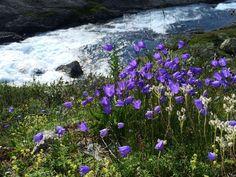 Rallarvegen, Norway