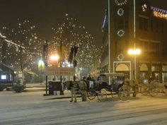 Horse-Carriage Ride in Old Town Fort Collins
