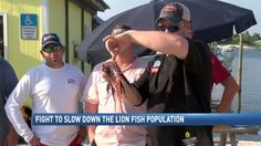 Lion Fish spearfish competition hopes to slow growth of invasive species