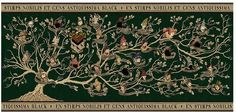 Harry Potter Black Family Tapestry Premium Print