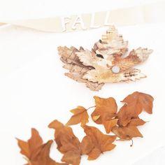 Coucou IG World ! Vous avez vu le nouveau Thème du Challenge Photo sur Blog? (lien dans ma bio) Rejoignez-nous! Douce fin de journée  #blog #newpost #colors #fall #flowleaf2015 #autumn #challenge #photo #october