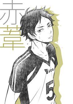 i'm thirsty Keiji Akashi Kagehina, Bokuto X Akaashi, Kuroo, Akaashi Keiji Hot, Haikyuu Volleyball, Volleyball Anime, Anime Manga, Anime Guys, Anime Art