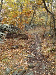 Humpback Rocks - Waynesboro, VA