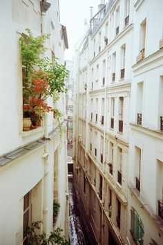 The narrow, winding passageways of Paris