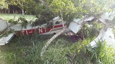 (Video) Intentaron tapar con hojas la avioneta estrellada en Paquera