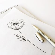 """gooseberrymoon: """"Practicing drawing poppies. """""""