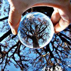 Crystal Decoration Ball - Take Amazing Photos!