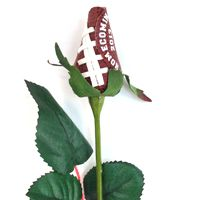 homecoming mum designs | Football Homecoming Mums & Garters Ideas. Cute way to ask somebody to homecoming too!