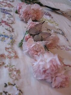Pink carnations and a Pink butterfly