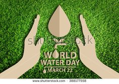 stock-photo--world-water-day-save-water-concept-paper-cut-of-eco-on-green-grass-388177558.jpg (450×320)