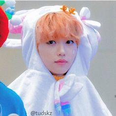 Read Felix as your roomate from the story carrot cake Lee Min Ho, Kpop, Kids Icon, Felix Stray Kids, Fandom, Kid Memes, Kids Wallpaper, Boyfriend Material, Freckles