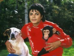 Crazy Pictures On Internet: MICHAEL JACKSON YOUNGEST PICTURE (MICHAEL JACKSON FANS)