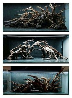 Aesthetically pleasing natural wood for vivariums or aquariums Architectural Landscape Design