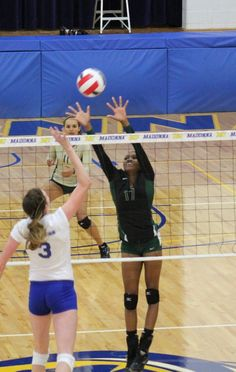 basketball vs volleyball essay