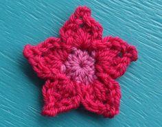 pointy petal flower