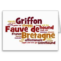 Griffon Fauve de Bretagne Greeting Cards