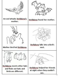 Stellaluna Story Sequence                                                                                                                                                      More
