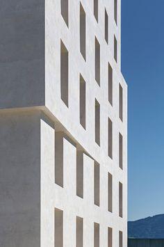 Wohlfühltemperatur - Baumschlager Eberle bauen sich ein Büro in Lustenau