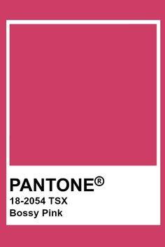 Pantone Color Chart, Pantone Colour Palettes, Pantone Colours, Color Charts, Deep Winter Colors, Warm Colors, Colour Board, Color Box, Material Board