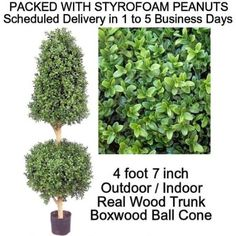 Amazon.com: SPJPLANTS Artificial Outdoor Indoor Potted 4 foot 7 inch Boxwood Ball Cone Topiary Tree Plant packed with styrofoam peanuts: Home & Kitchen  $145