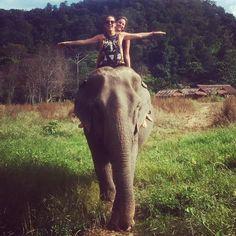 Barbies in #Thailand  #bourbonbarbies #travel #adventures #wanderlust #fashion #elephants #style #upcycled #worldtravelers #freedom #happy #ootd #picoftheday #igers by bourbonbarbies