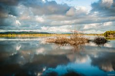 Refections of a Cloudy Day by Mike Prieto on 500px